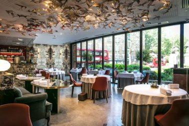 Restaurant Story - Premier Construction News