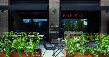 Kricket White City
