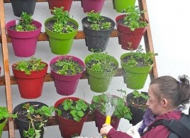 Covers Alresford Helps Hospice Create Sensory Garden