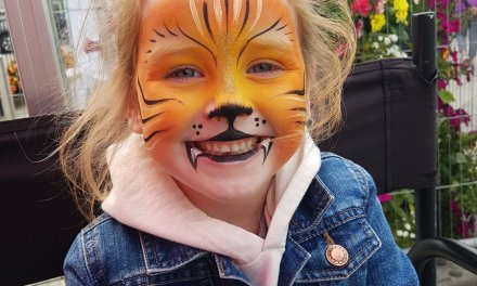 Puck Fair Face Painting