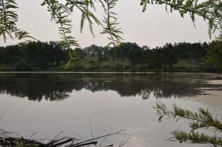Twisted Tine Pond 2