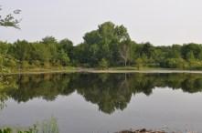 Twisted Tine Pond 4