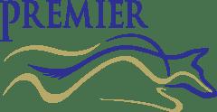 Premier Protection Associates