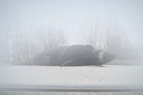 Palombini-01-Moby Dick-2017-50x75-Fotografia_Digitale