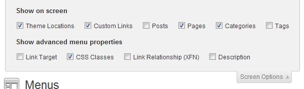 WordPress Menu-Screenshot of Menu screen options panel