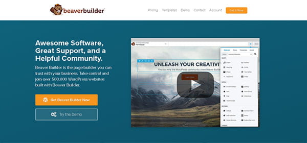 Beaver builder is the best choice for large agencies