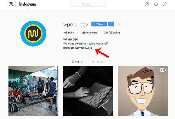 screenshot of WPMU DEV instagram profile page