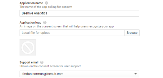 Screenshot of the section where you add your application name.