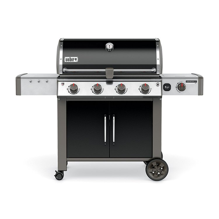 Weber natural gas grill bbq