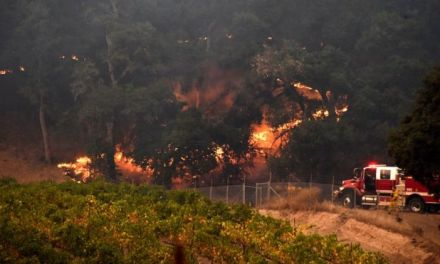 California wildfires: Death toll climbs to 31