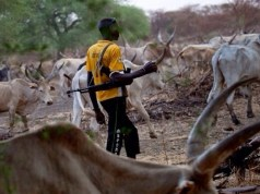 preview:Fulani Herdsmen: Six killed, several houses burnt in fresh Plateau attack