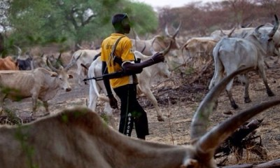 Herdsmen in South West