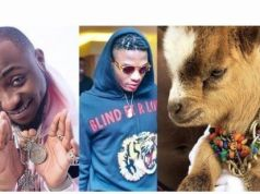 Davido reacts as Wizkid acquires new pet