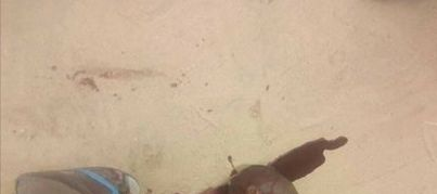 Graphic Photo: APC chairmanship aspirant stabbed to death in Delta