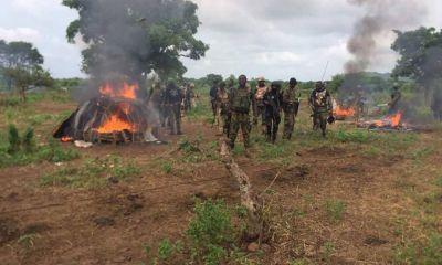 Insurgents suffer heavy casualty in Borno