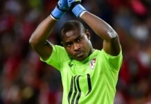French Ligue One club, Lille part ways with Nigerian goalkeeper, Vincent Enyeama