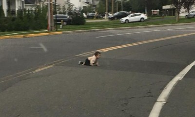 Baby found crawling across New Jersey road prompts investigation