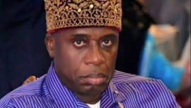 Nigerians attack Rotimi Amaechi in Spain