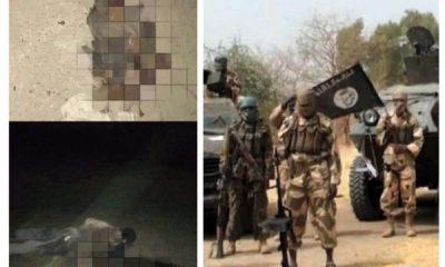 Suicide bomber kills herself and partner in Borno