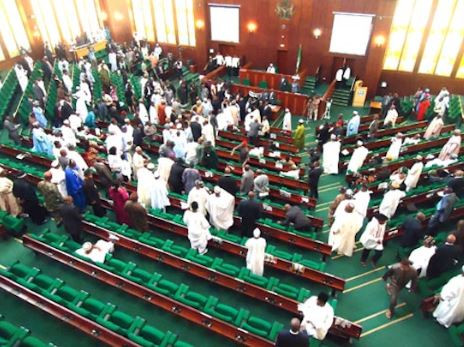 Lawmaker raises alarm over Nigeria Police, judiciary