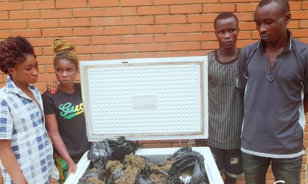 Police arrest four with freezer loaded with Indian Hemp in Ogun