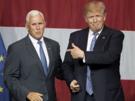 Trump confirms Mike Pence will be his running mate in 2020