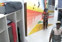 BBNaija 2019: Diane hits Tacha in another fight