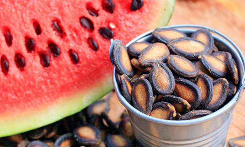 Health Benefits of Watermelon Seeds, Health Benefits of Watermelon Seeds, Premium News24