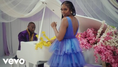 "Video: Tiwa Savage – ""Park Well"" ft. Davido, Video: Tiwa Savage – ""Park Well"" ft. Davido, Premium News24"