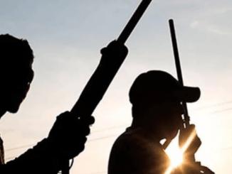 Unknown gunmen kill 17 in Plateau