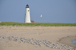 Nantucket as one of the best tourist attractions in Massachusetts