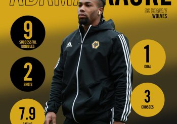 Rising stock: Wolves' enigmatic bargain has gone from zero-to-hero under Nuno – opinion