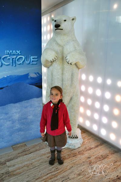 Devant l'ours