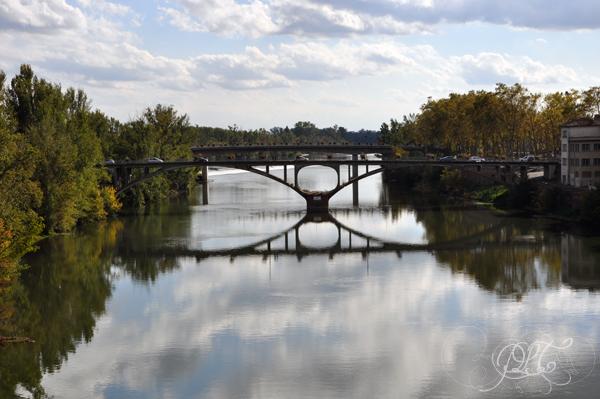 Le Tarn vu du Pont Vieux