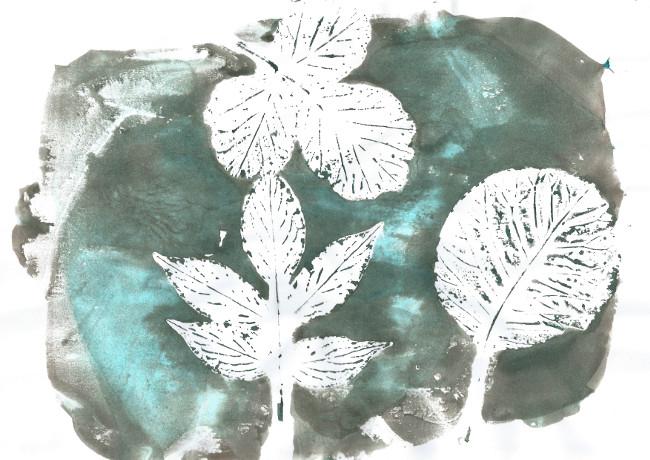 Prendre le temps - Voyageons Ludique - Forêt - Empreintes de feuilles sur agar-agar