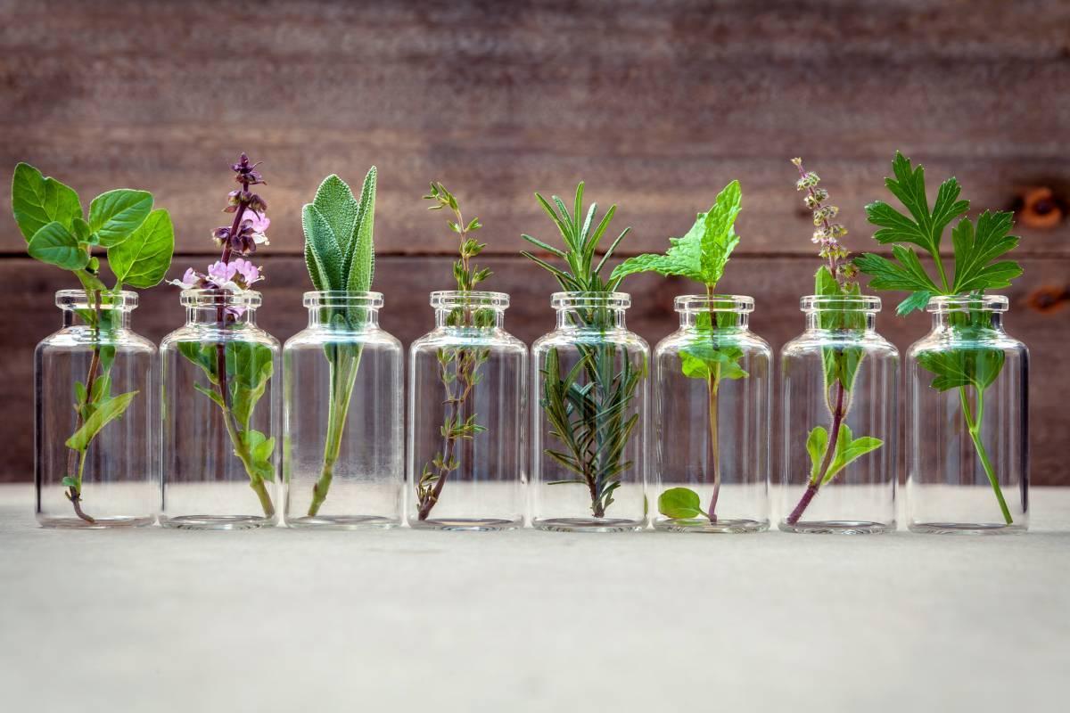 Les bienfaits de l'aromathérapie chez soi