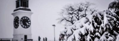 Novi Sad u zimskom izdanju