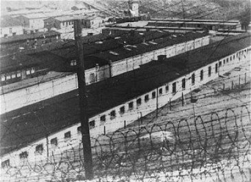 umap campos de concentracion