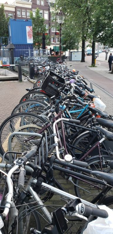 Bikes, bikes, bikes!!