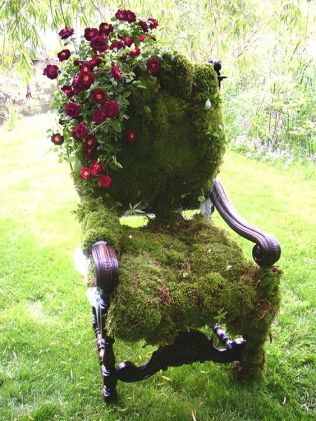 flowers reimagined