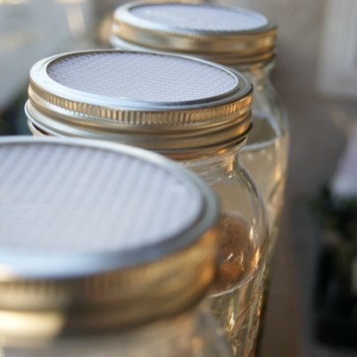 DIY Soaking & Sprouting Lid for Mason Jars