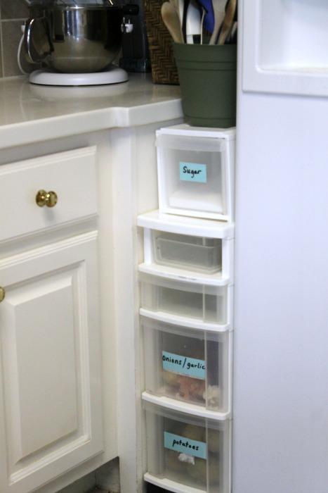 put food storage by fridge