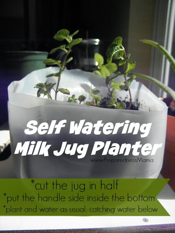 Self Watering Planters Lowes
