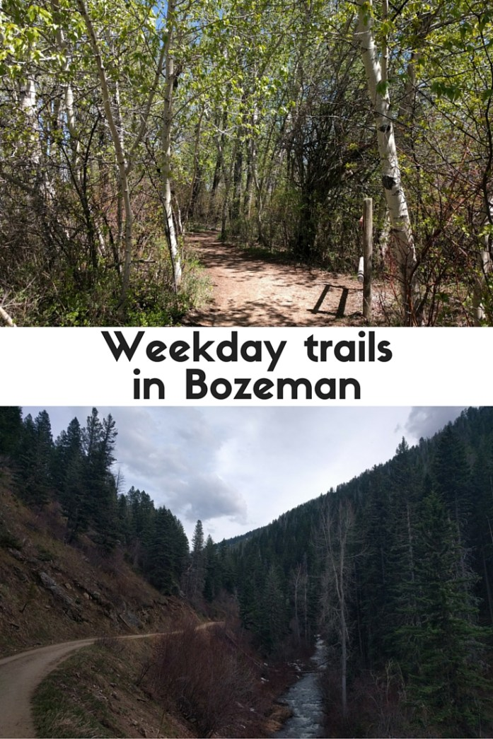 Some in- and near-town trails for weekday adventures in Bozeman, MT.