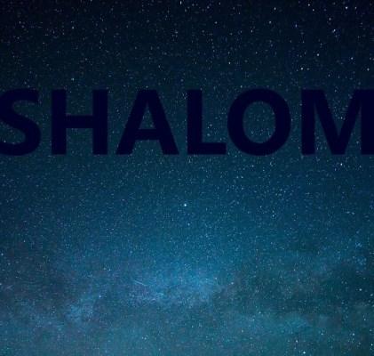 Seeking Shalom in 2018