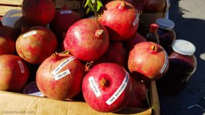 Pomegranate Festival in Goychay, Azerbaijan + Video