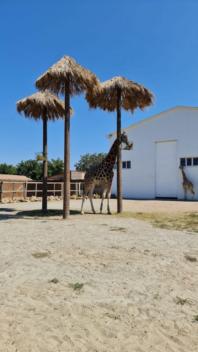 Biopark Odessa