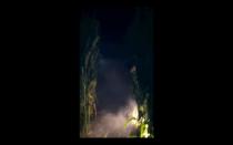 Screen Shot 2013-10-08 at 11.47.08 PM
