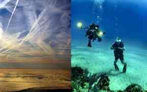 Geoengineering dim sun corals