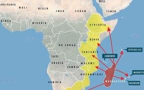 Black Plague Africa